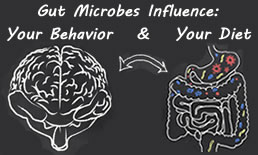 Gut microbes influence diet and behavior