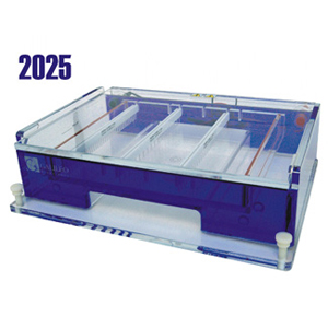 galileo 2025 horizontal gel box